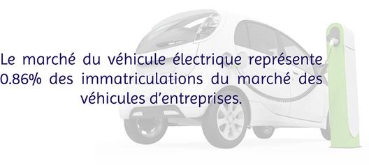 flotte de véhicules électriques